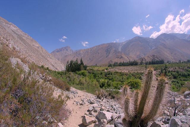 Vallée d'Elqui